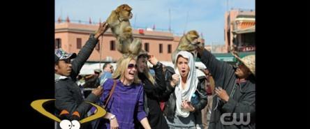 ANTM_Morocco