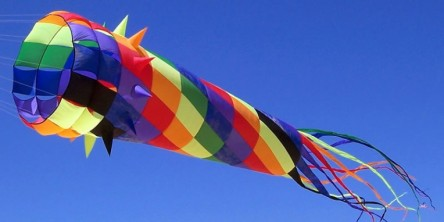 Kite Flying Day – Feb 8th